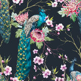 Watercolor peacock pattern Royalty Free Stock Image