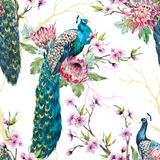 Watercolor peacock pattern Stock Photo