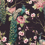 Watercolor peacock pattern Royalty Free Stock Photos