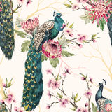 Watercolor peacock pattern Royalty Free Stock Images