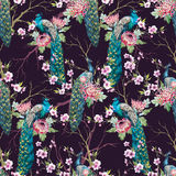 Watercolor peacock pattern Stock Images