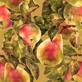 Watercolor pear with apple. Floral seamless pattern. Bronze background. Watercolor pear apple branch background fruit handiwork design floral leaf  illustration Stock Photos