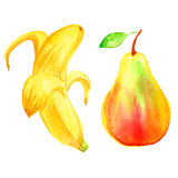 Watercolor pear, banana hand drawn illustration isolated on white background, food ingredient, organic tropical fruit, decorative Royalty Free Stock Photography