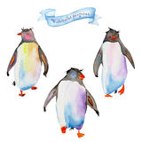 Watercolor penguins Royalty Free Stock Image