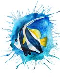Watercolor Pennant coralfish. Watercolor image of Pennant coralfish with blue blot background Royalty Free Stock Photos