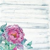Watercolor peonies bouquet over beautiful background Royalty Free Stock Photos