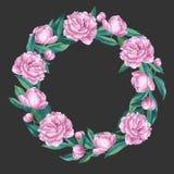 Watercolor peony wreath illustration. Round border. Stock Photos