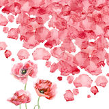 Watercolor petals of a poppy Royalty Free Stock Photo