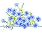 Watercolor petunias Stock Photos