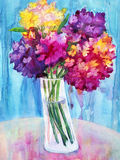 Watercolor Phlox flowers Royalty Free Stock Photography