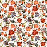 Watercolor physalis seamless pattern. autumn berry illustration. Watercolor physalis seamless pattern. autumn berry hand drawn illustration. botanical stock illustration