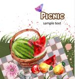 Watercolor picnic Vector. Summer fruits on green grass background. Royalty Free Illustration