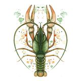 Watercolor picture of crustacean, cancer, lobster, zodiac sign, river cancer, detailed illustration, macro, spray, green, print on. Clothes, for decoration and stock illustration