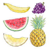 Watercolor picture of different fruits Royalty Free Stock Photography