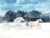 Free Watercolor Picture Of Two White Horses Royalty Free Stock Photography - 170733097