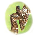 Watercolor picture seamless pattern animal mammals living in Africa giraffes, mother and child, female giraffe and cub, portrait o Stock Photo