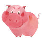 Watercolor pig Royalty Free Stock Image