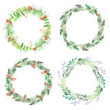 Watercolor pine branches round frame. Round frames with watercolor pine cones and branches. Hand painted green coniferous twig and pinecone. Decorative wreath royalty free illustration