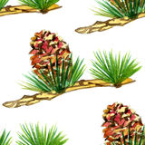 Watercolor pine set on white background. 3 Stock Image