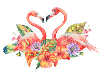 Watercolor pink flamingo and tropical flowers. Greeting card. Hand painted floral illustration with exotic flowers and birds isolated on white background vector illustration