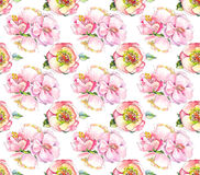 Watercolor pink flower pattern. Watercolor backgrond wath flower Royalty Free Stock Photo