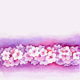 Watercolor Pink Flower Vector Borderters Royalty Free Stock Images