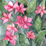 Watercolor pink flowers leaf floral texture background Stock Photos