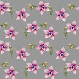 Watercolor pink orchids seamless pattern. Hand painted on a grey background Stock Photos