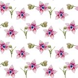 Watercolor pink orchids seamless pattern. Hand painted on a white background Stock Photography