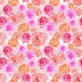 Watercolor pink peach english rose, rose splash botanical blossom wedding ceremony backdrop background