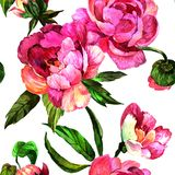Watercolor pink peony flower. Floral botanical flower. Seamless background pattern. Fabric wallpaper print texture. Aquarelle wildflower for background vector illustration