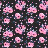 Watercolor pink poppies bouquets seamless pattern. Hand drawn on a dark background Royalty Free Stock Image