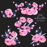 Watercolor pink poppies and floral branches bouquets collection. Hand drawn isolated on a dark background Stock Photography