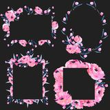 Watercolor pink poppies and floral branches frame borders collection. Hand drawn on a dark background Stock Photography