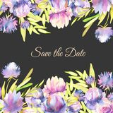 Watercolor pink, purple peonies and asters card template, greeting, Save the Date card design. Hand painted on a dark background Royalty Free Stock Images