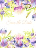 Watercolor pink, purple peonies and asters card template, greeting, Save the Date card design. Hand painted on a white background Royalty Free Stock Photography