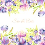 Watercolor pink, purple peonies and asters card template, greeting, Save the Date card design. Hand painted on a white background Stock Photo