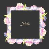 Watercolor pink and purple peonies frame. Hand painted on a dark background Stock Images
