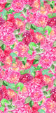Watercolor pink rose peony flower floral seamless pattern texture background.  Stock Images
