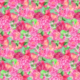 Watercolor pink rose peony flower floral seamless pattern texture background.  Royalty Free Stock Image