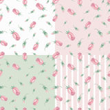 Watercolor pink roses Buds seamless pattern set Royalty Free Stock Images
