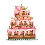Watercolor Pink Sandwich Cake With Cremy Roses Royalty Free Stock Images