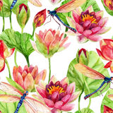 Watercolor pink water lily flower Royalty Free Stock Photography