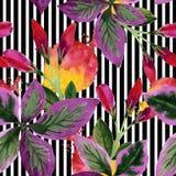 Watercolor pink weigela florida flowers. Floral botanical flower. Seamless background pattern. vector illustration