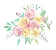 Watercolor Pink Yellow Roses Berries Flowers Spring Summer Wedding Floral Bouquet. Watercolor pink and yellow roses and flowers - pastel colors - pretty bouquet Royalty Free Stock Image