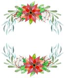 Watercolor poinsettia and cotton flowers winter Christmas wreath Royalty Free Stock Photography