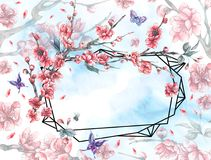 Watercolor polygonal frame with blooming cherry Royalty Free Stock Images