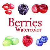 Watercolor pomegranate blackberry cherry grape raspberry blueberry set isolated vector Stock Photo
