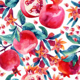 Watercolor pomegranate bloom branches and fruit seamless pattern Stock Image