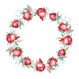 Watercolor pomegranate (garnet) wreath. Watercolor pomegranate (garnet) border. Beautiful and elegant branche isolated on white. Nice background for textile Stock Photos